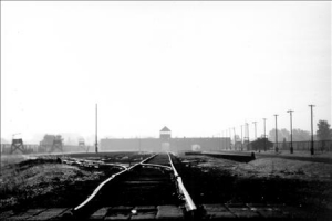 Auschwitz 2005 (1 photo)