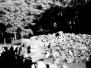 Gesprengte Gaskammern 2003, Auschwitz-Birkenau (1 photo)