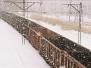 Stammlager Auschwitz -Eingang 2004 (1 photo)
